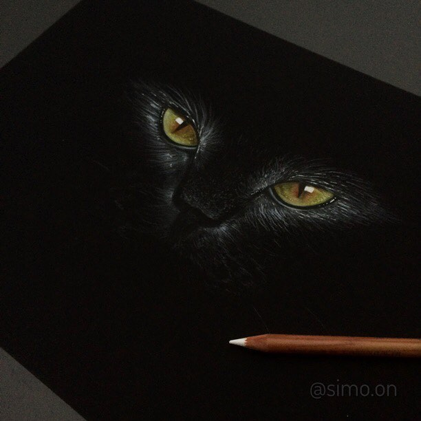 15-Black-Cat-Simon-Balzat-Colored-Pencils-make-Beautiful-Drawings-www-designstack-co