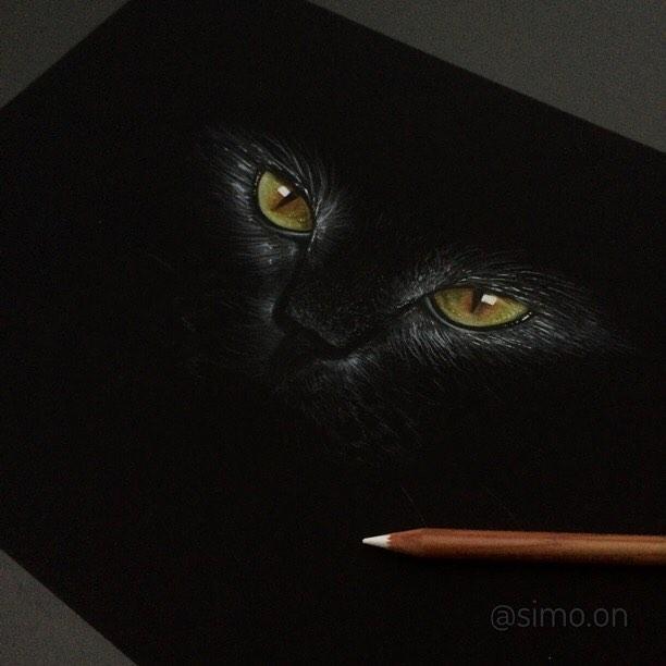15-Black-Cat-Simon-Balzat-Colored-Pencils-make-Beautiful-Drawings-www-designstack-co