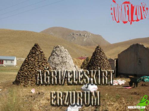 2013/08/31 Turkey2013 46. Gün (Ağrı/Eleşkirt - Erzurum)