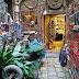 La Libreria Acqua Alta di Venezia: il luogo dei sogni per gli amanti dei libri