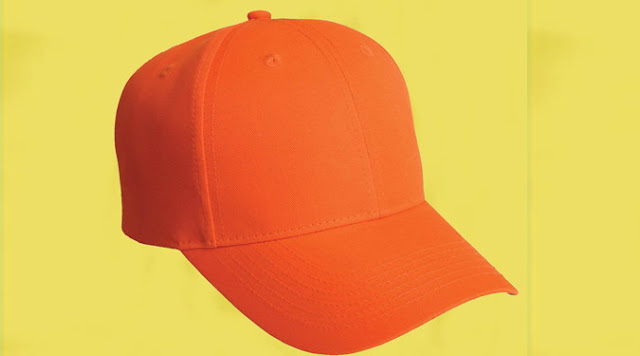 player who got the Orange Cap in IPL cricket