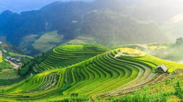 Wisata Ubud Bali