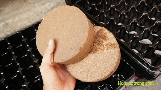 Bánh đất mùn dừa siêu nở, 1 bánh là đủ đất sạch cho cả khay