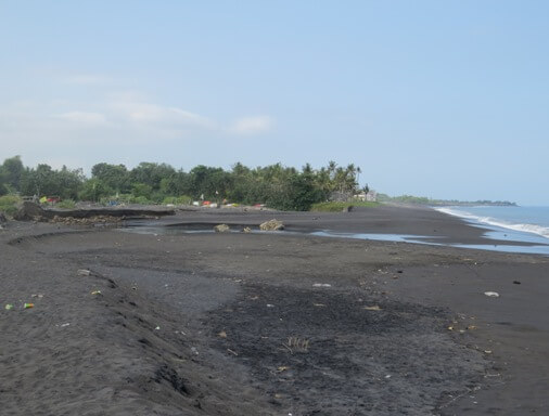 Tegal Besar is i of the places where Olive Ridley turtles  BeachesinBali: Tegal Besar Beach - Pantai Tegal Besar Bali