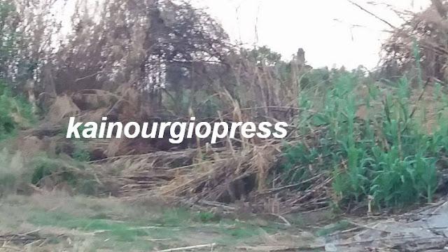 Αποτέλεσμα εικόνας για kainourgiopress πυρκαγιά