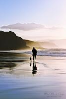 Paseando al perro en la playa