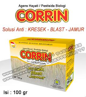 CORRIN NASA 100GRAM Rp.50.000,-