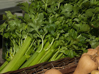 Benefits of Celery in Every Part of its Plant