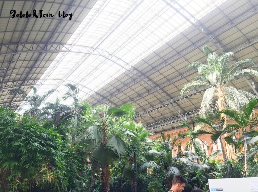 excursiones-con-niños-madrid-estacion-atocha-jardin-tropical