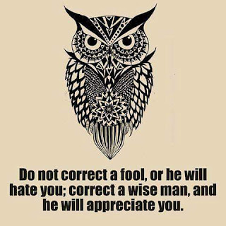 Warih Homestay - Do Not Correct A Fool, Or He Will Hate You. Correct A Wise Man And He Will Appreciate You