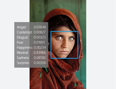 Afghan Girl National Geographic Cover Emotions Analyzed