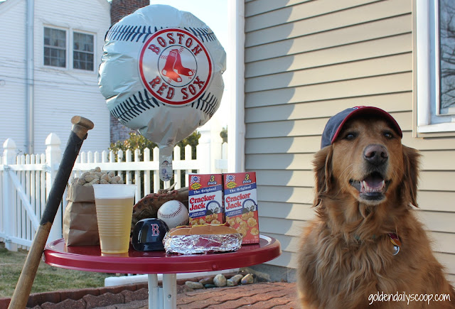 Fenway Park Favorite food, golden retriever, dogs