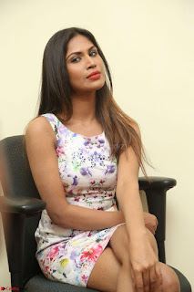 Nishi Ganda stunning cute in Flower Print short dress at Tick Tack Movie Press Meet March 2017 123.JPG