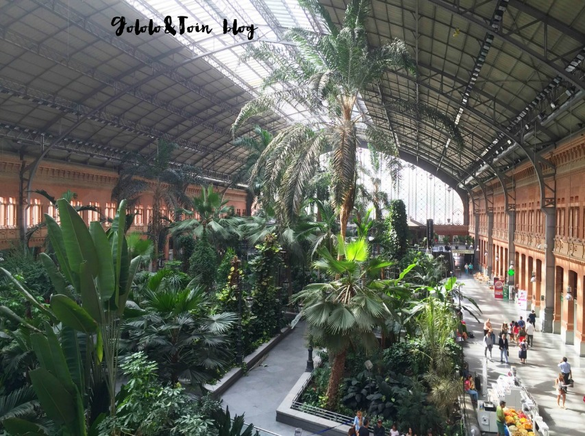lugares-que-visitar-con-niños-en-madrid-jardin-tropical-atocha