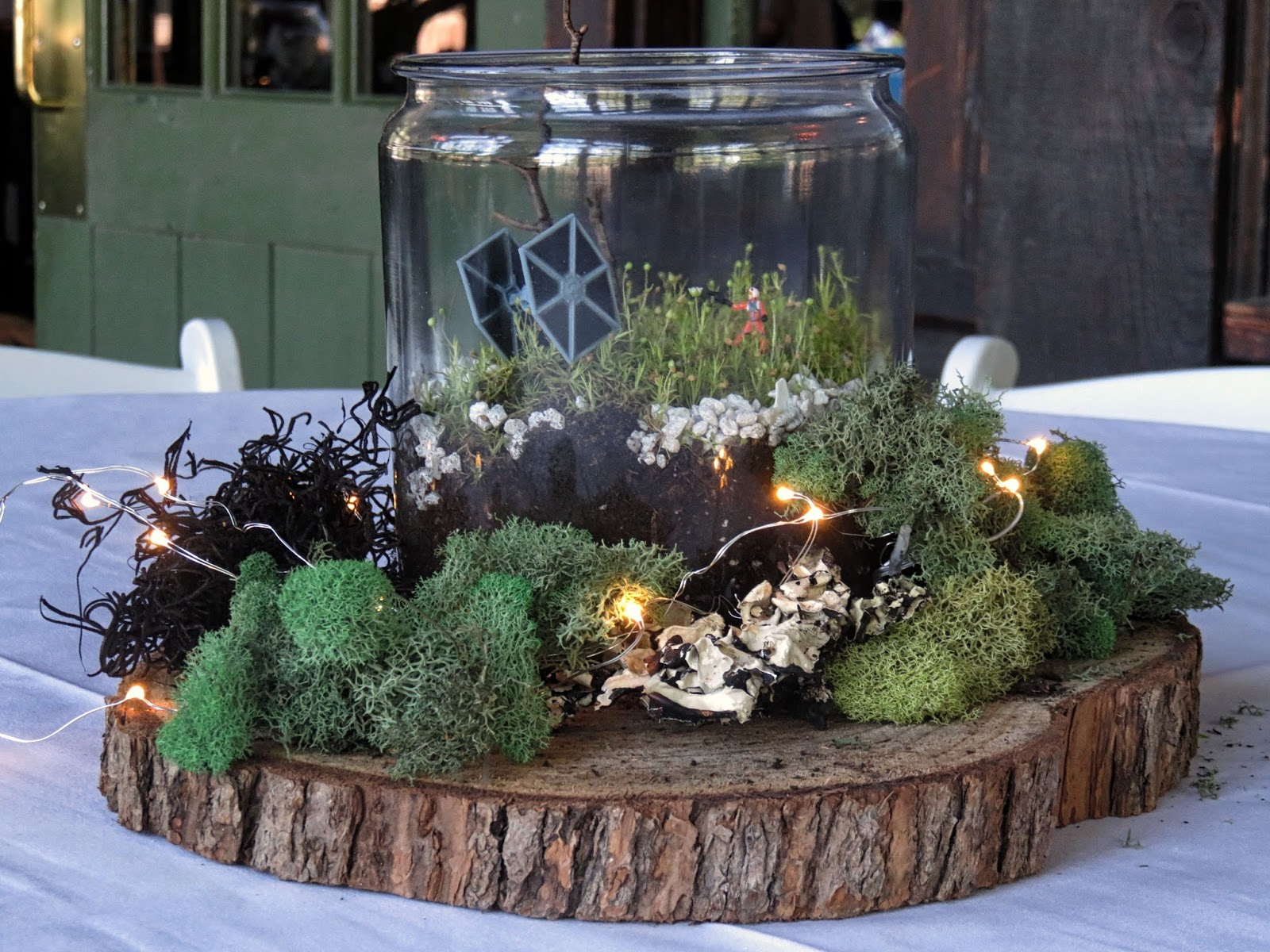 Chuck does art wedding centerpieces diy rustic terrariums with i was recently asked allowed more like to help make centerpieces for one of my best friends wedding we made simple glass terrariums and accented them junglespirit Gallery