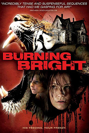 Burning Bright (2010) Movie Download In Hindi 300MB – Worldfree4u