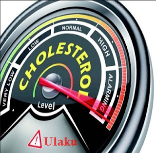 Obat kolesterol alami