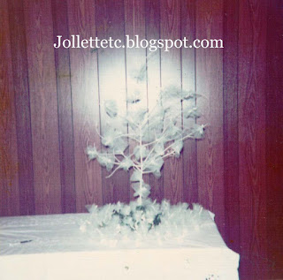 Rice Tree wedding 1973 https://jollettetc.blogspot.com