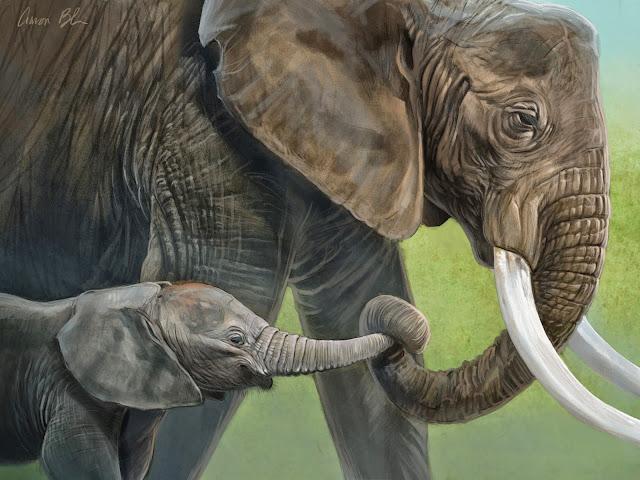 tranh ông voi