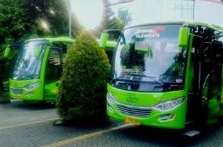 Tarif Sewa Bus Medium Jakarta, Harga Sewa Bus Medium Jakarta