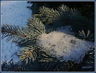 zima, sople lodu, śnieg, mróz