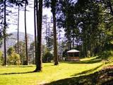 Image of Dhanaulti