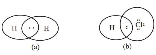 Polarisasi Ikatan Kovalen