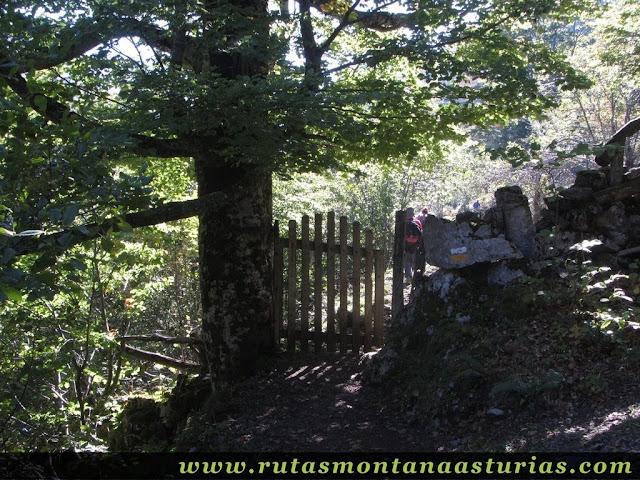 Ruta de los Arrudos y Corteguerón: Portilla en el camino
