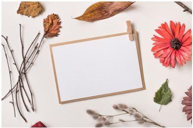 tarjeta con flores secas hecha a mano