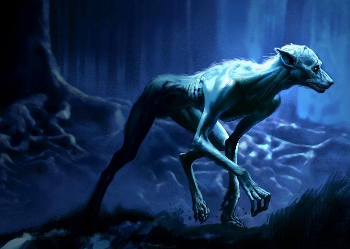 Mengapa Ada Manusia yang Bisa Berubah Menjadi Serigala?