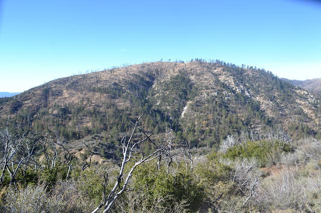 Sewart Mountain