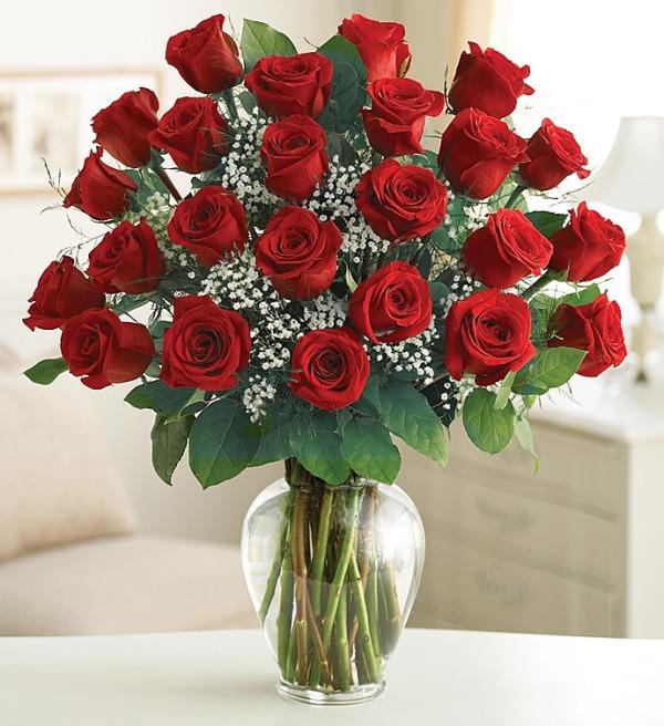 Служба доставки цветов г ставрополь садовые растения и цветы купить