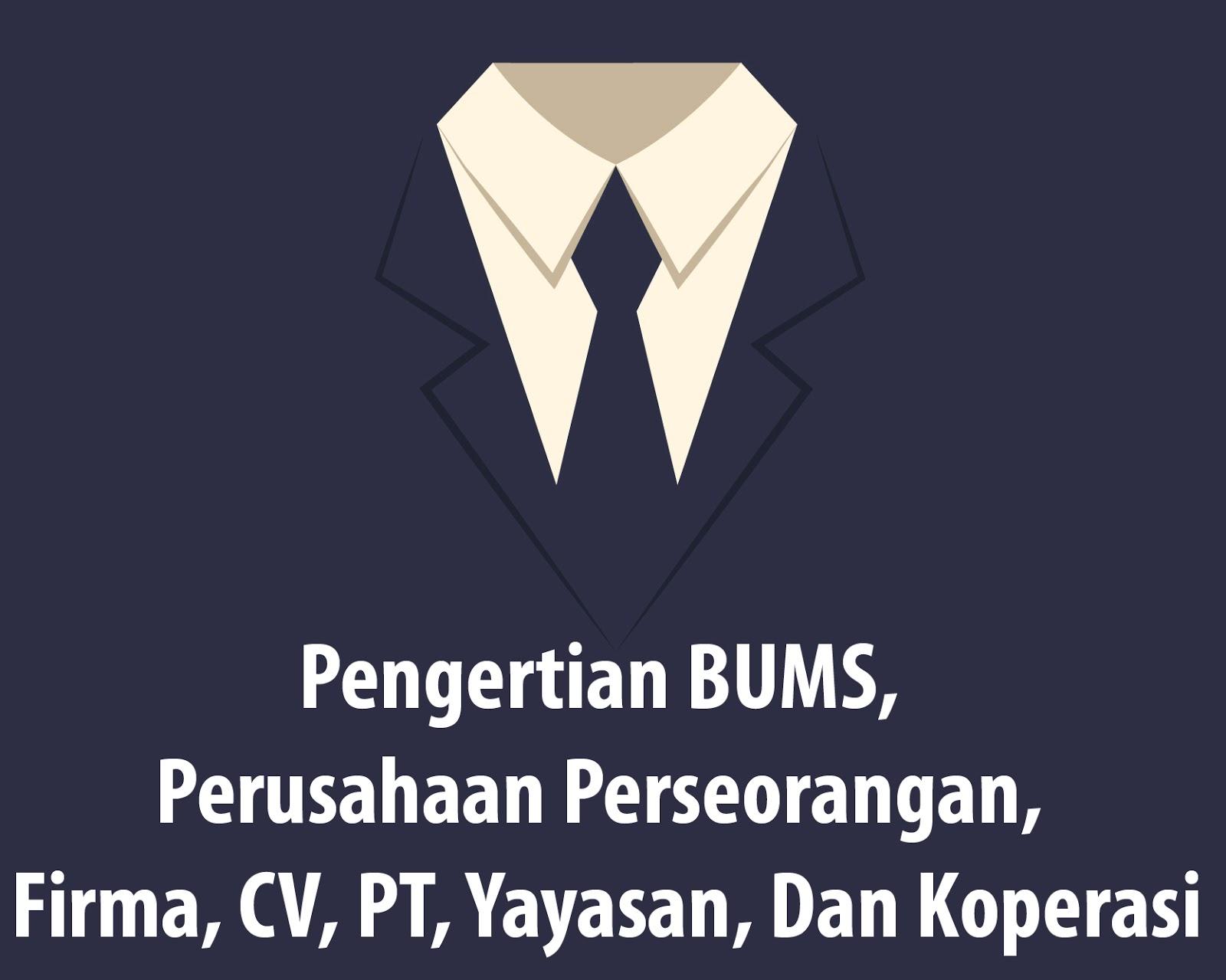 Pengertian BUMS, Perusahaan Perseorangan, Firma, CV, PT