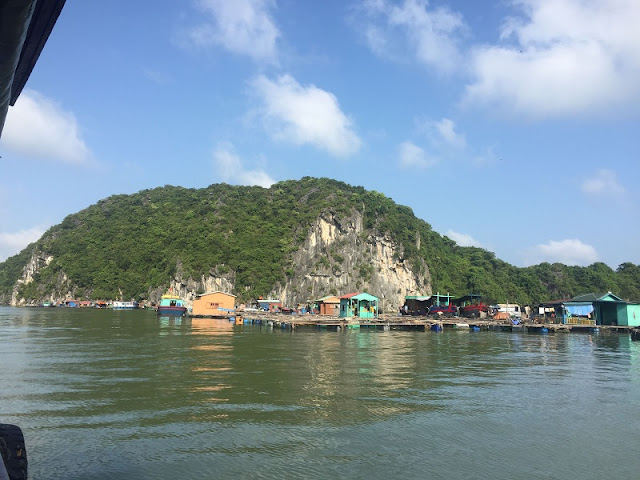 The best experience to do in Halong Bay, Vietnam 1