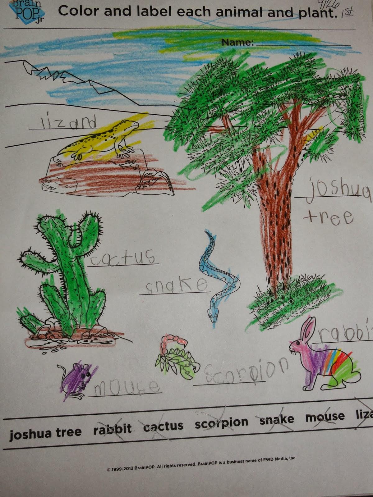 Domicile Lessons Desert Habitat