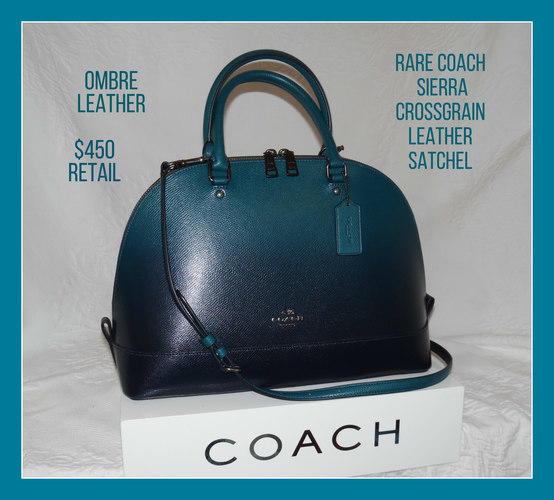 25ae4e4d8fb8 Coach Bag image from Tophatter.com