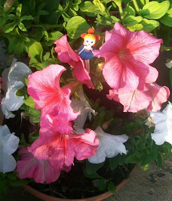 в цветочном горшке с петунией живёт крошечная пластилиновая цветочная фея