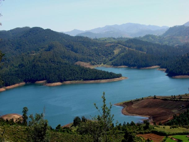 Ooty Holiday