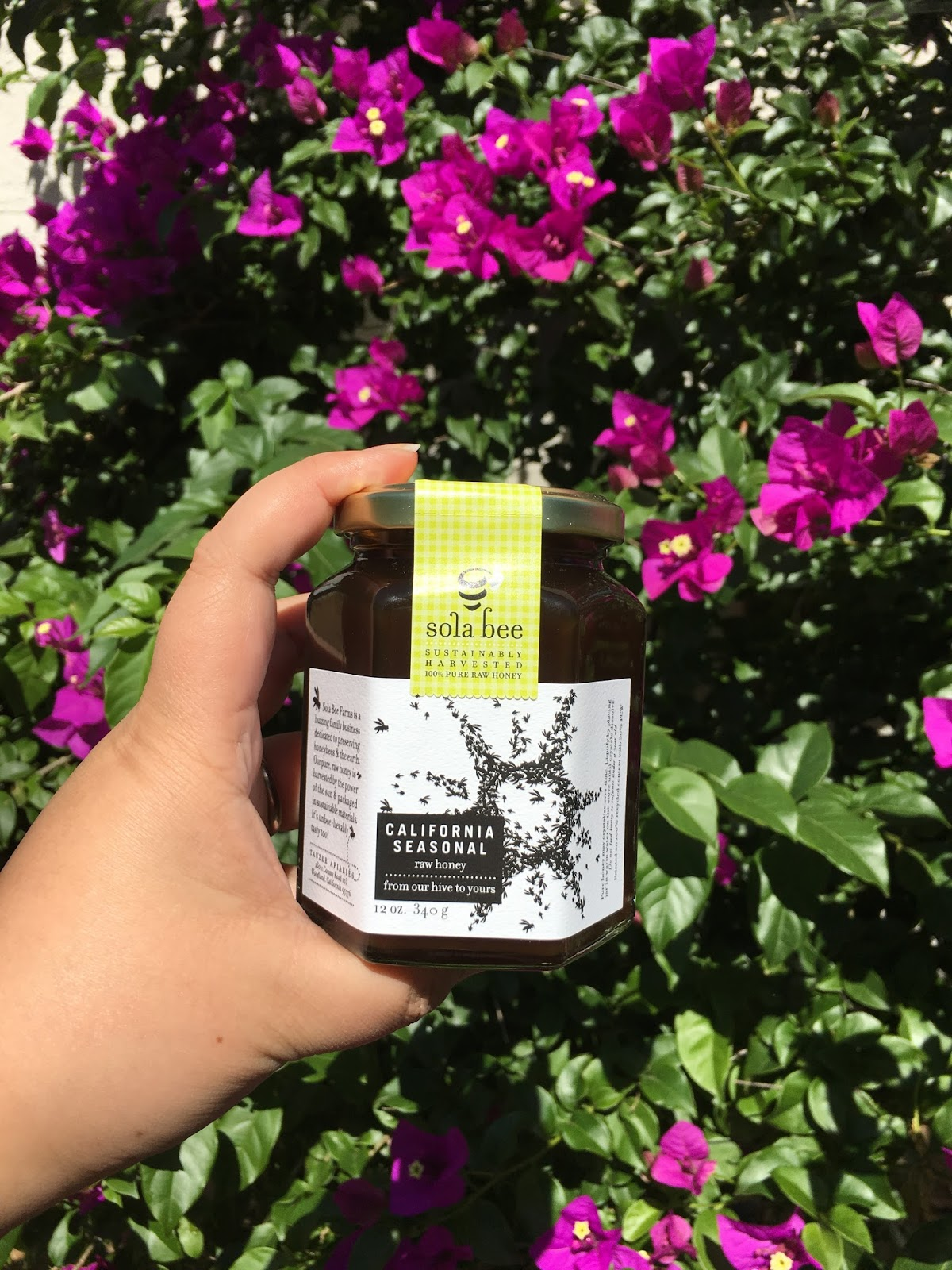AshleyNewell me: Sola Bee Farms: Using Honey to Combat Allergies