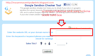 cara mengatasi Google sanbox 1