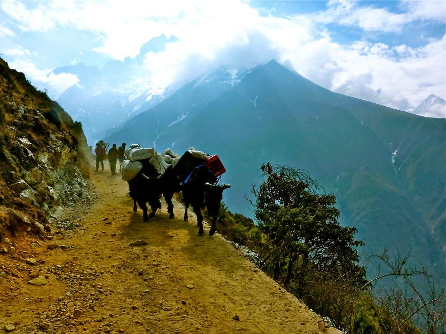 The trail from Namche to Tengboche - My 25 Photos Of The Everest Base Camp Trek