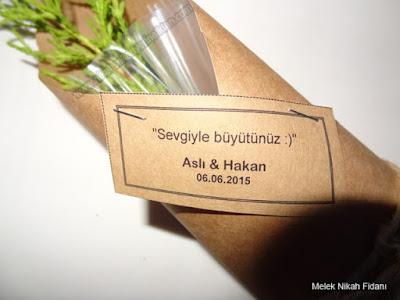 Aslı ve Hakan nikah fidanı İzmir 2