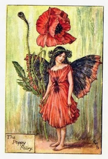 The Poppy Fairy, Flower Fairies, Cicely Mary Barker