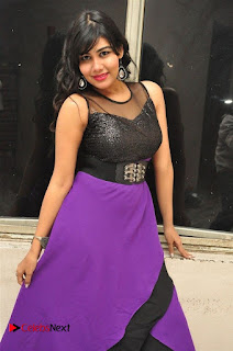 Telugu Actress Rachana Smith Stills at Money is Honey Audio Release  0024.jpg