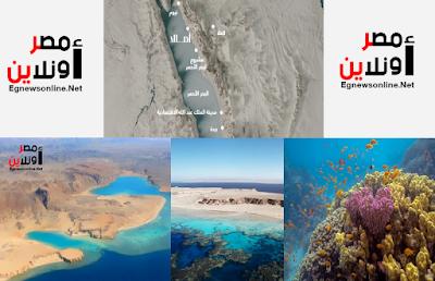 السعودية,آمالا,أخبار عربية,أخبار مصر,معلومات,السياحة,