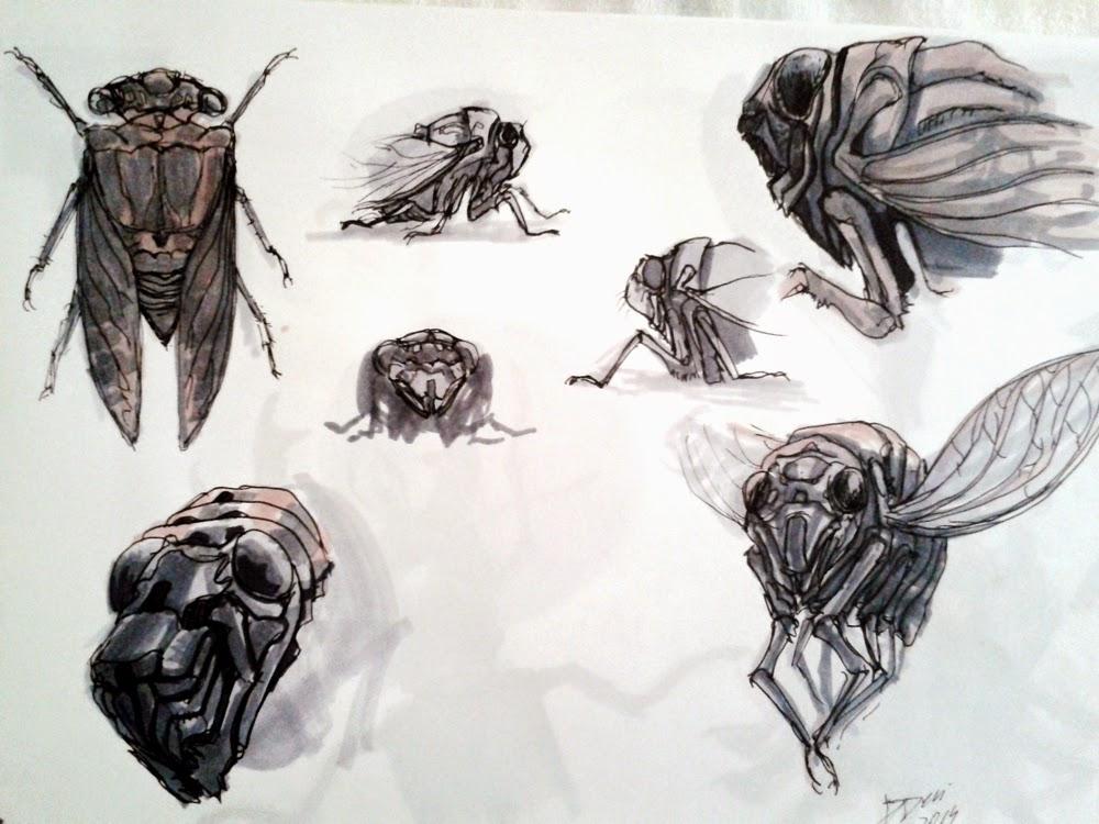 creature design, sketchbook, cicada, cigarra, insects, insetos, bug, douglas deri, deri, deriart