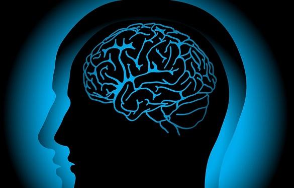 Untuk Menghindari Penuaan Otak Lakukanlah 6 Hal Berikut Ini