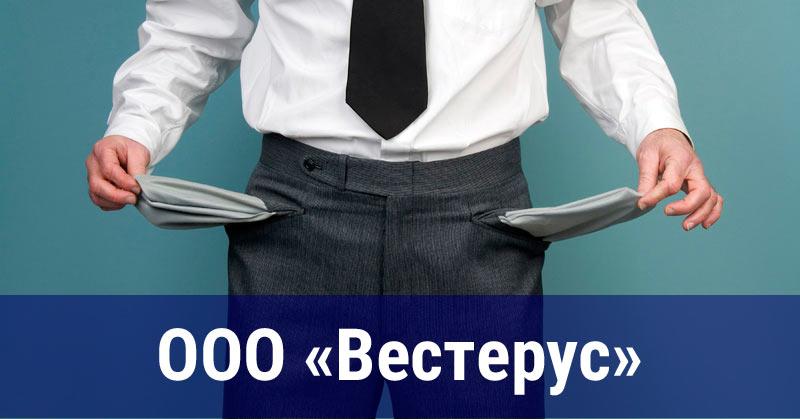 ООО «Вестерус», Лазарев Андрей Александрович, г. Челябинск