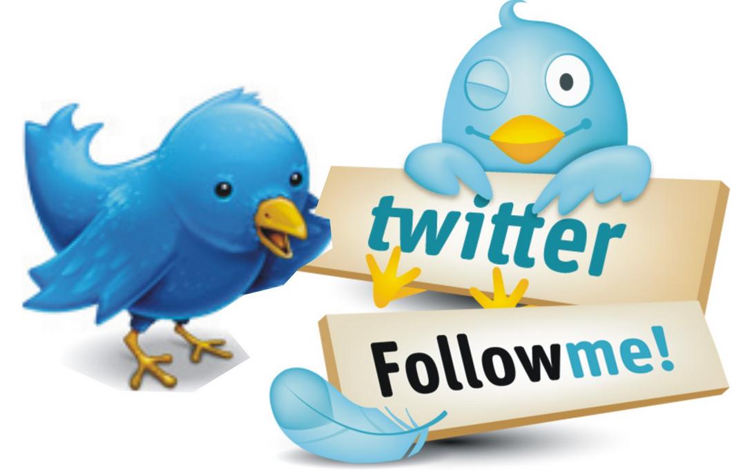 How I got thousands of Real Twitter Followers using Mass Followers
