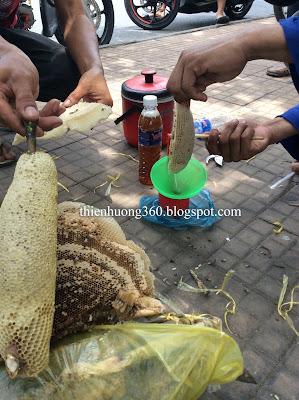 Vắt mật ong bằng tay từ bọng tổ mật ong ruồi